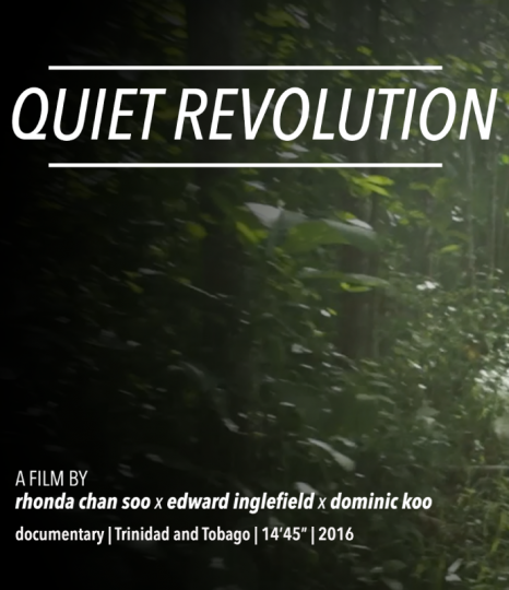 Image Caption: Featured image for 'Quiet Revolution'.