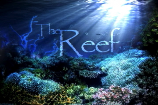 Image Caption: Featured image for 'The Reef'.