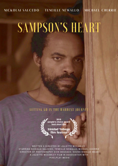 Image Caption: Featured image for 'Sampson's Heart'.